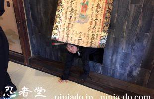 Ninjado_ninja_sinoib