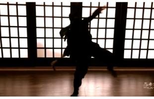 Ninja_do_ninja_action