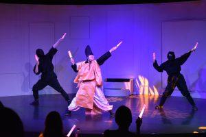 Ninja show Geek dance