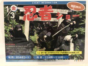 Ninja Show in Imabari 2020