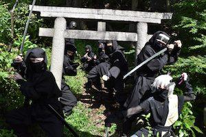 Ninja-Do_Ninjas
