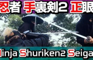 youtube_ninja_shuriken2_seigan